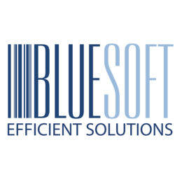 Bluesoft efficient solutions logo krzywe