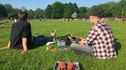 Barbecue in het Vroezenpark