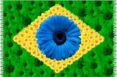 Brasil3 foro