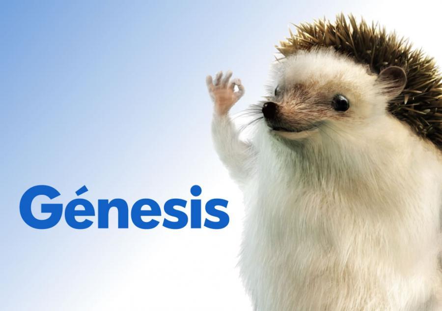 Génesis-Seguros