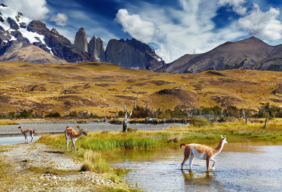 Los diez mejores lugares de Chile para visitar: torres del paine