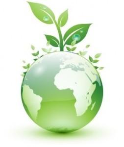 Impuestos verdes foro