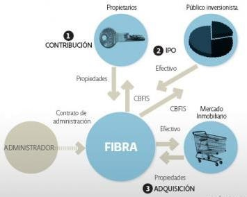fibras beneficios