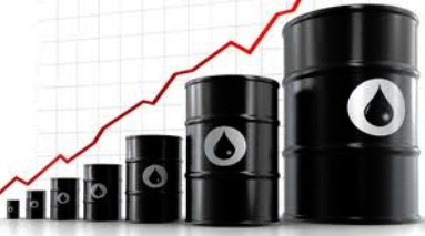 cobertura petróleo