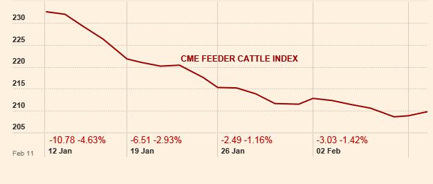 Feeder cattle index 1 month