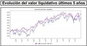Valor liquidativo Aviva Espabolsa