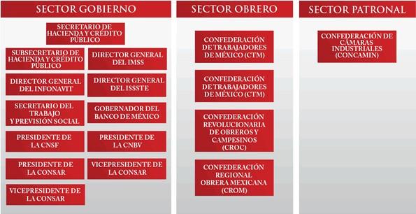 Consar: Forma de Organización