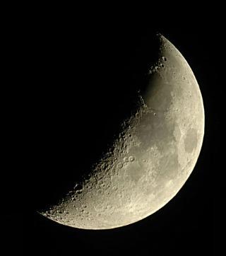 Luna foro