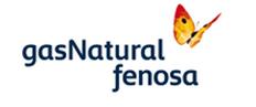 Tarifa economy Luz Gas Natural Fenosa