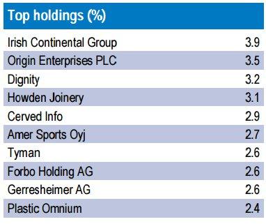 F&C European Small Cap Fund: principales posiciones