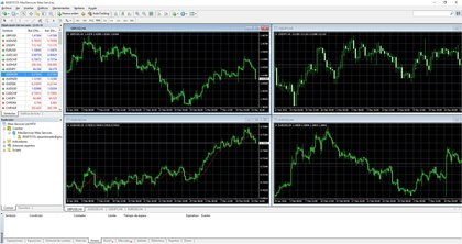 Metatrader umarkets foro
