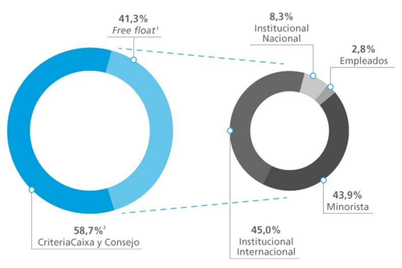 Distribución del capital social por tipo de accionista