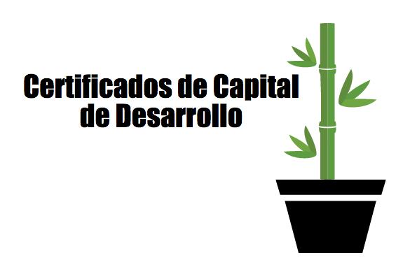 ¿Qué son los Certificados de Capital de Desarrollo (CKD's)?