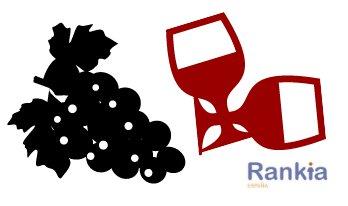 Sector vitivinícola, atractivo del buen vino