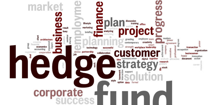 Hedge Fund, rendimientos