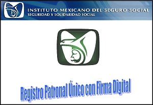 registro patronal IMSS