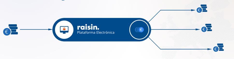 Como funciona Raisin