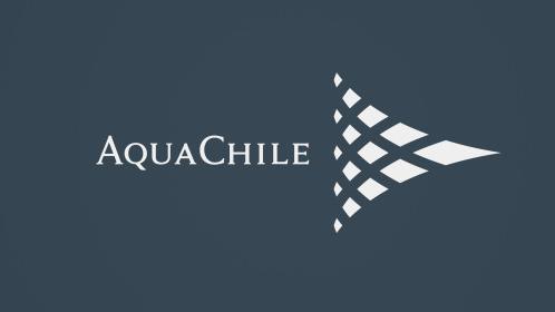 Aquachile: Líder mundial en la producción de salmones y truchas