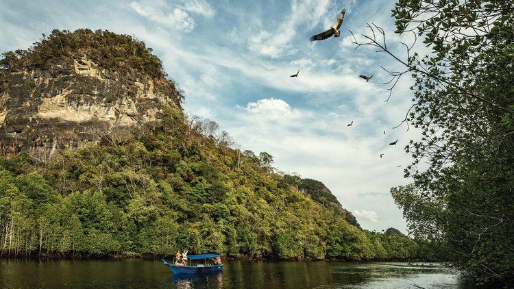 Four Seasons Langkawi - Mangrove Safari