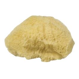 Természetes szivacs, vegyes, 6-7,5 cm, 3 db