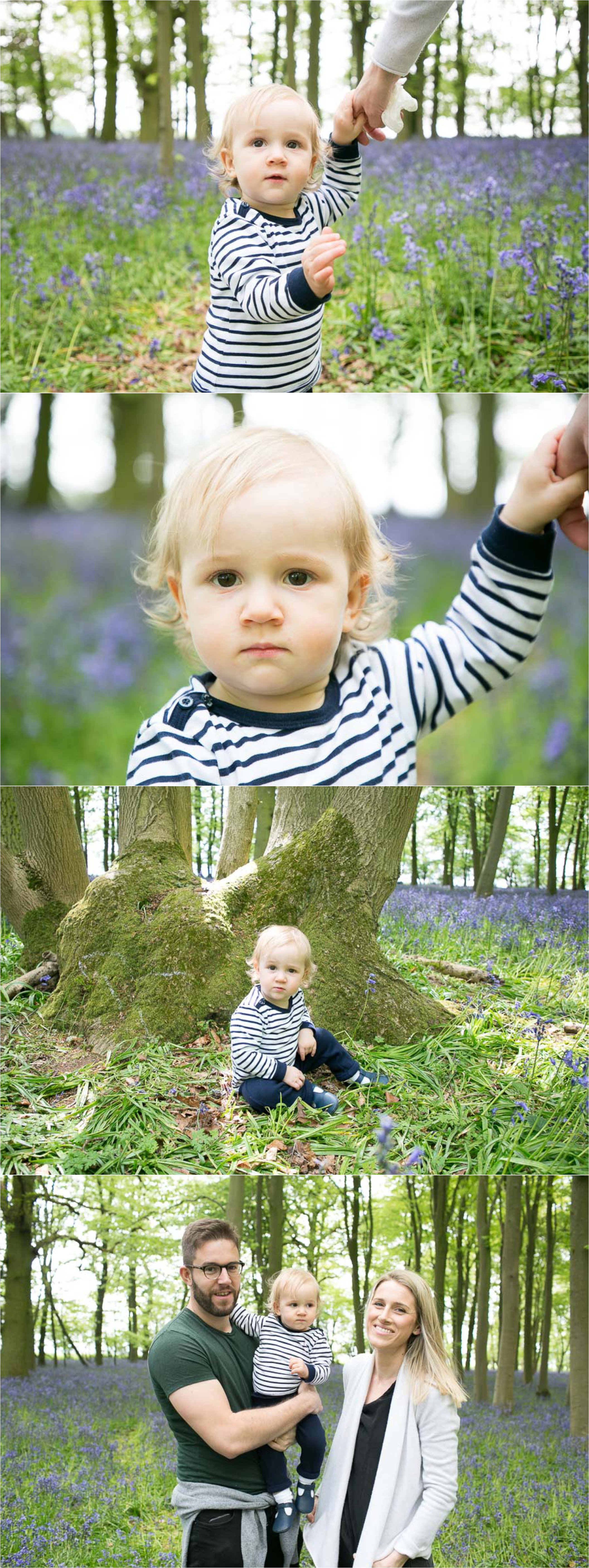 saffron walden family photography in bluebell woods