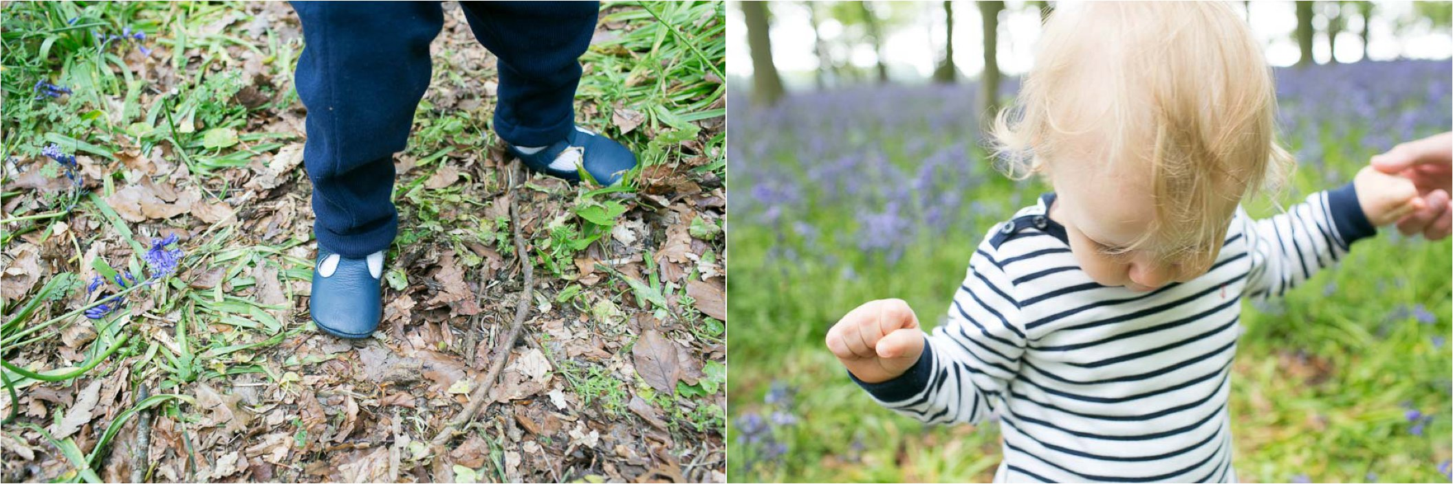 gorgeous first birthday family photography in bluebell woods