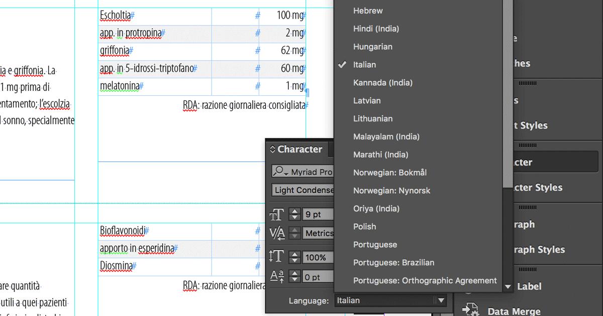 6 Steps you should take before sending an InDesign file to translation