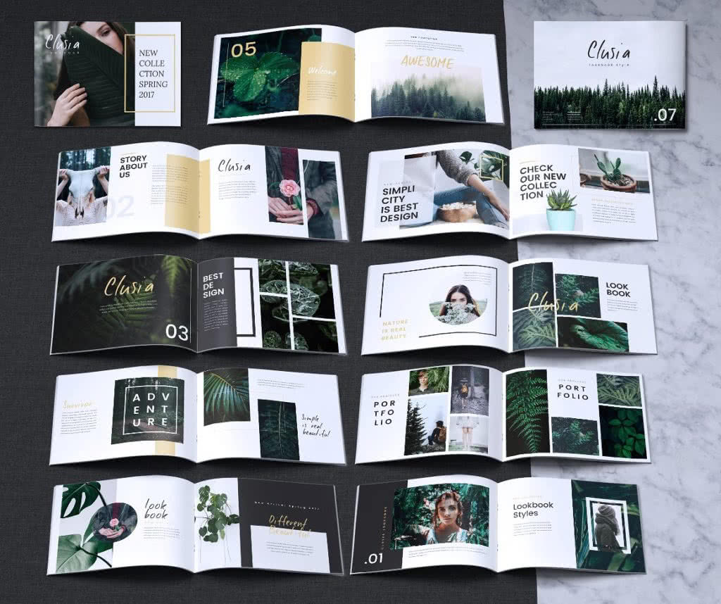 Indesign Booklet Template Free