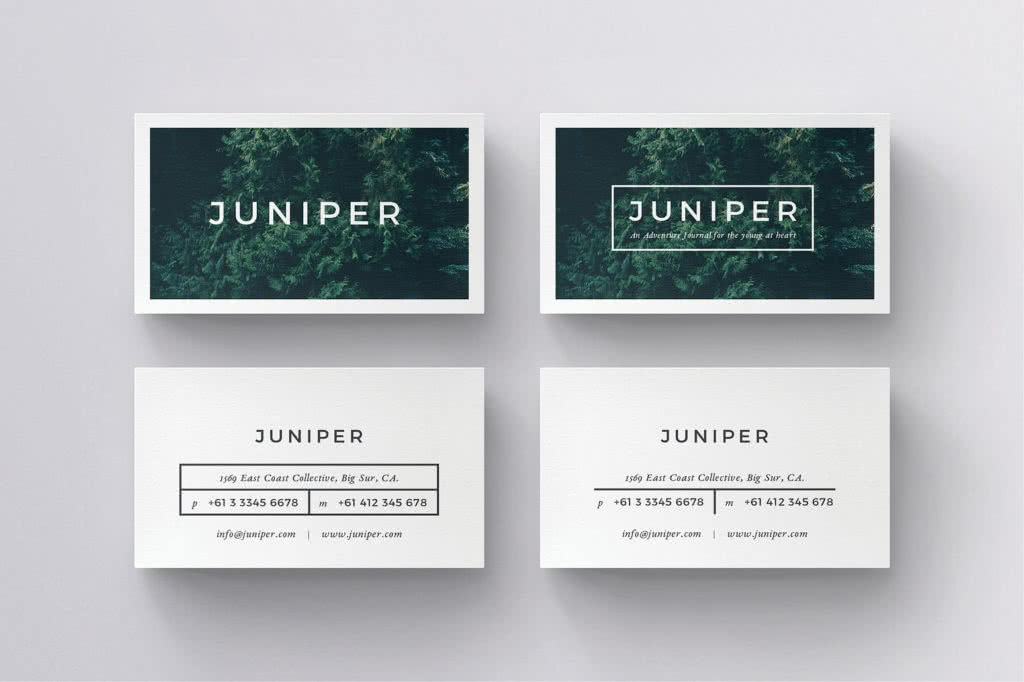 Business Card For Local InDesign Template Preview