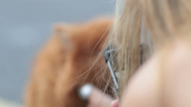 Woman taking picture of pet dog
