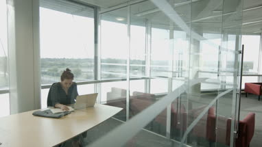 Female executive working alone in office on laptop
