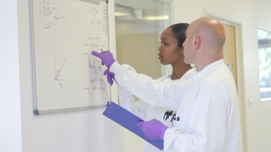 Scientist analyze and discuss research data on white board in science laboratory