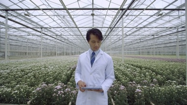 MS Scientist standing and using digital tablet in greenhouse