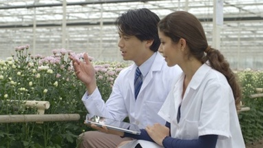 MS Scientists examining plant and using digital tablet in greenhouse