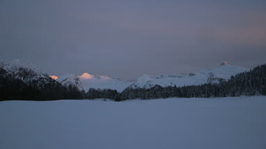 View of snowcapped mountain and pine trees at sunset