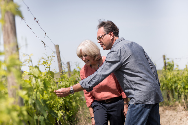 italian vineyards and senior tourist couple