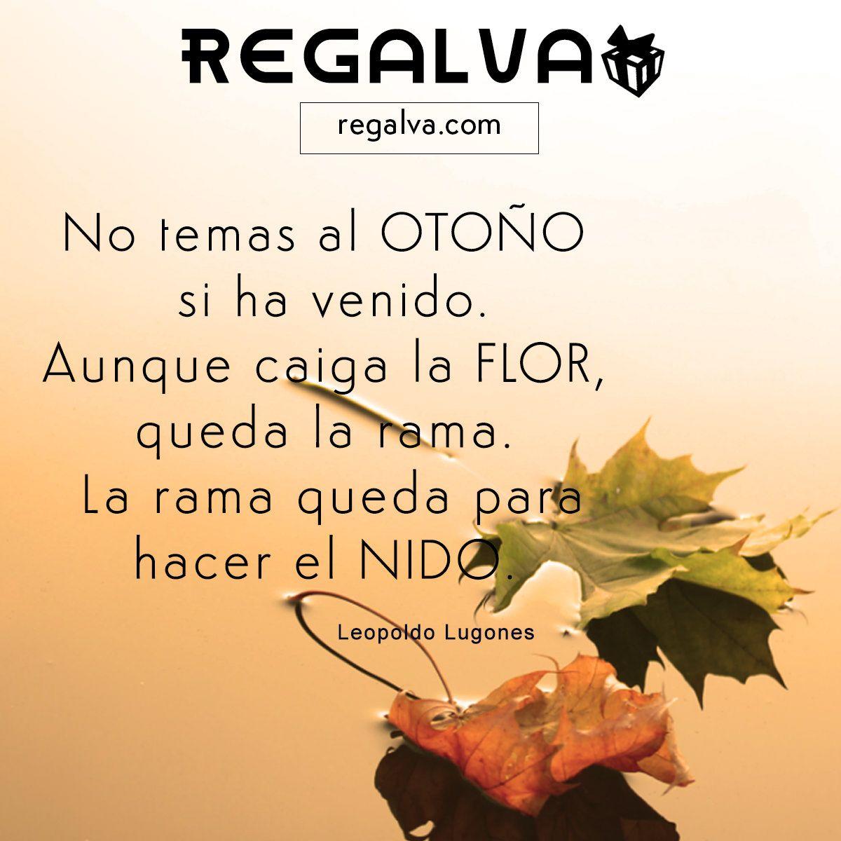 Best Imagenes De Otono Con Frases Bonitas Image Collection