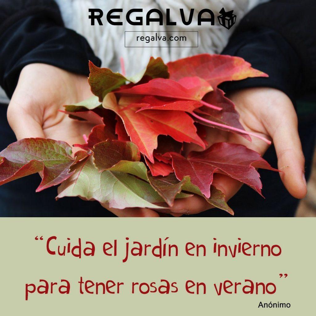 cuida_el_jardín_en_invierno_blog_regalva