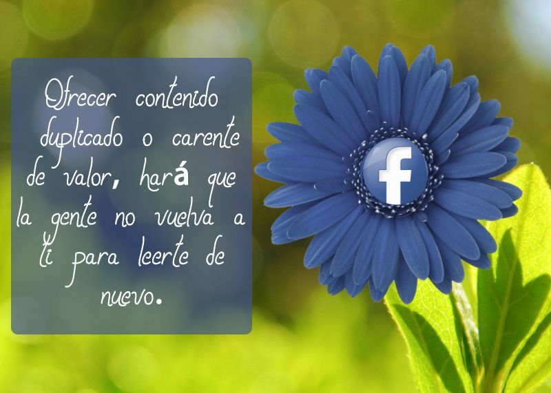 blog_regalva_facebook