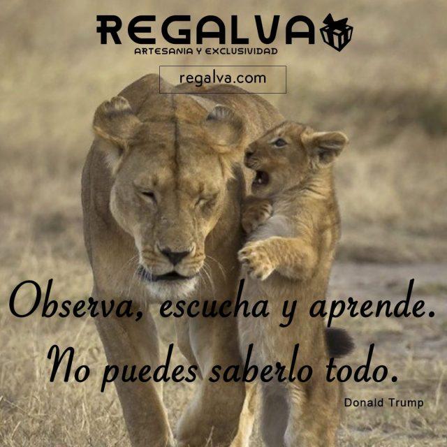 escucha-observa-y-aprende_blog_regalva