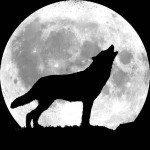 Howl Of The Wolf Reiki Attunement