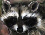 Raccoon Reiki Empowerment