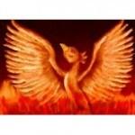 Phoenix Rising Reiki Attunement