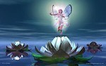 Natural Devas & Fairies Reiki