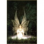 Fairy Light Reiki Attunement
