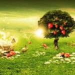 Abundant Dreams Reiki