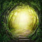 Divine Provision Reiki - ALL 3 LEVELS