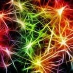 Emotional Nervous System Healing Reiki