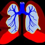 Emotional Respiratory Healing Reiki