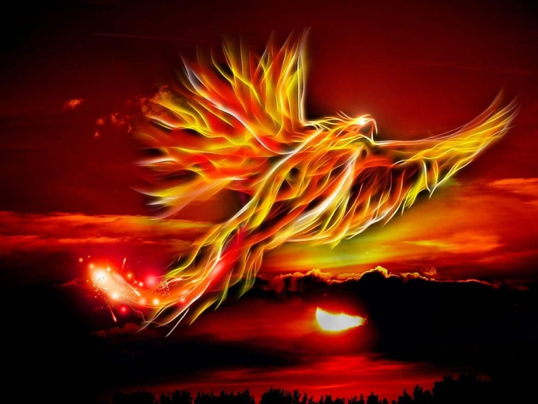 Phoenix Light Reiki